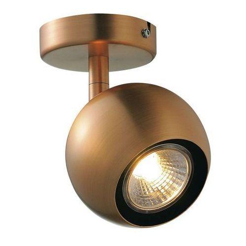 Spotline Light eye 1 gu10 ścienna/sufitowa, miedź, qpar51, max. 50w, 149069