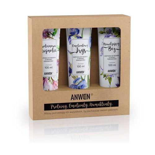 Anwen , zestaw 3 odżywek do średniej porowatości (magnolia, irys, bez) (5907222404201)