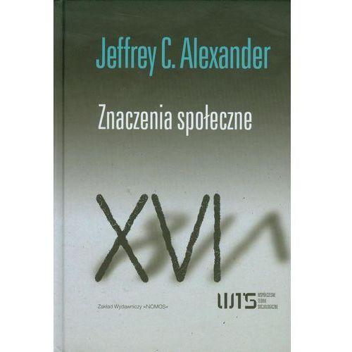 Znaczenia społeczne. Studia z socjologii kulturowej - Jeffrey C. Alexander