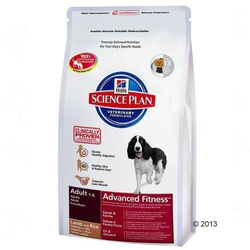 Hill's Canine Adult, jagnięcina i ryż - 2 x 12 kg