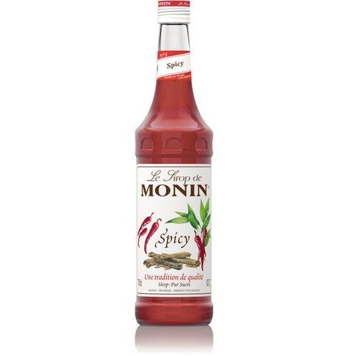 OKAZJA - Syrop KORZENNY Spicy Monin 700ml (3052910018900)
