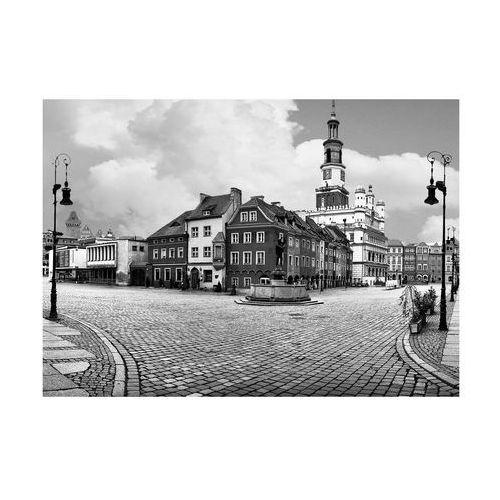 Deska kuchenna CITY LOFT 1B 35 X 25 CM ALFA-CER (5902027014914)