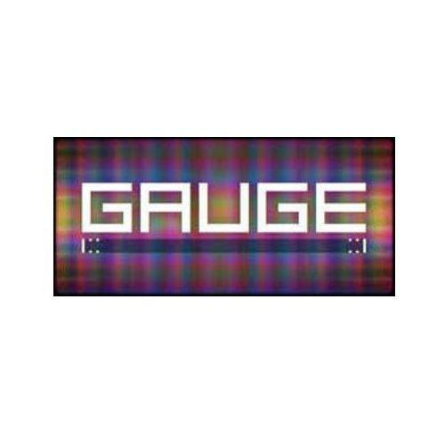 GAUGE (PC)