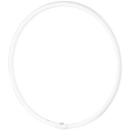 Freepower  świetlówka pierścieniowa 65w t9 5400 k
