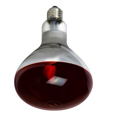 ZARÓWKA LAMPA GRZEWCZA R125 E27 250W PROMIENNIK CZERWONA 13540731, 13540731