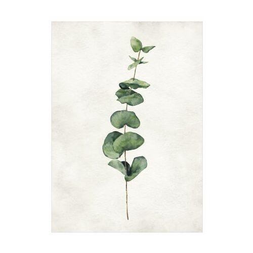 Knor Kanwa liście ii 50 x 70 cm
