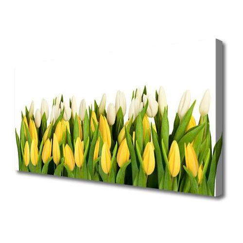 Obraz na płótnie tulipany kwiaty roślina marki Tulup.pl