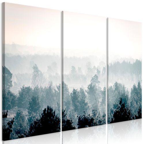 Obraz - zimowy las (3-częściowy) marki Artgeist