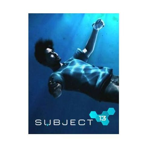 Subject 13 (PC)