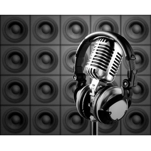 Wyprzedaż: fototapeta mikrofon 142, 224x178,5 cm, papier lateksowy mat marki Wally - piękno dekoracji