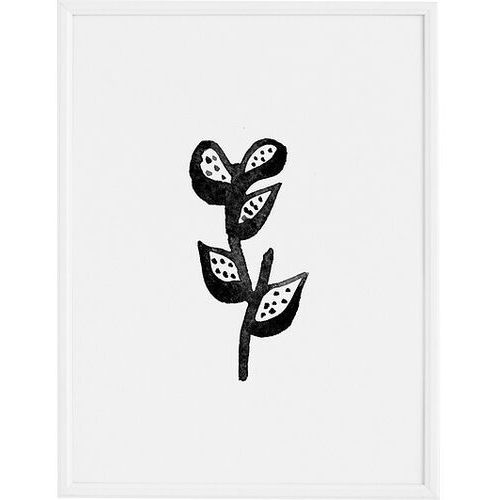 Plakat plant 40 x 50 cm marki Follygraph