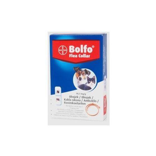 Bayer Bolfo obroża przeciw pchłom i kleszczom dla kotów i małych psów 38 cm