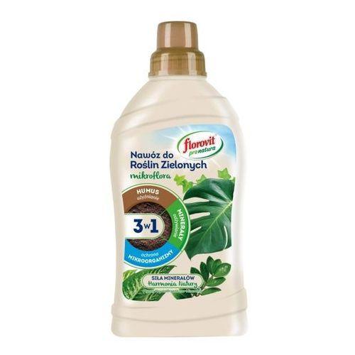 Nawóz do roślin zielonych Florovit pro natura płynny 1 kg (5900498023985)