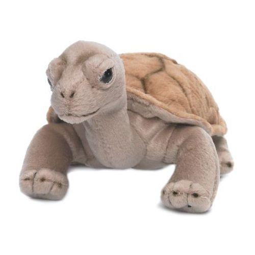 Wwf Żółw lądowy 20 cm
