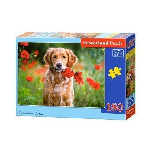Castor 180 elementów kwiaty dla ciebie (5904438018284)