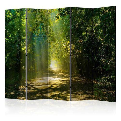 Parawan 5-częściowy - droga w słońcu ii [room dividers] marki Artgeist