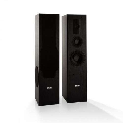 Auna Line E 1005 3-drożne głośniki kolumnowe hi-fi 700W czarne (4060656104749)