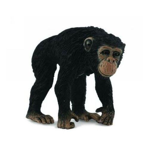 Szympans samica - figurka - COLLECTA