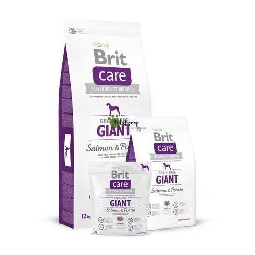 care grain - free giant salmon & potato - bezzbozowa karma dla dużych psów łosoś i ziemniaki 1 kg marki Brit