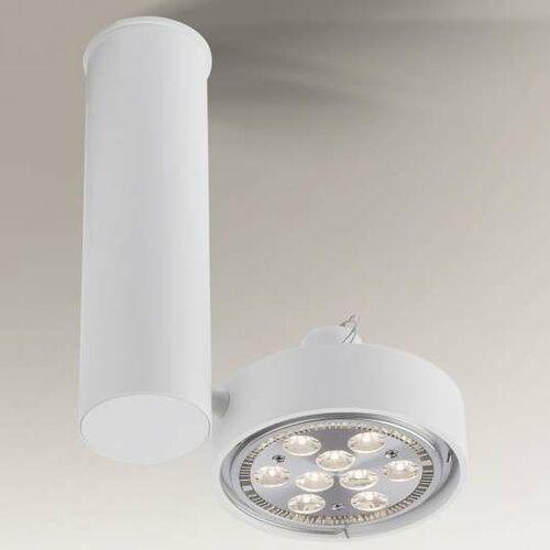 Reflektorowa LAMPA sufitowa NATORI 7209 Shilo regulowana OPRAWA metalowa SPOT tuba biała, kolor biały;czarny