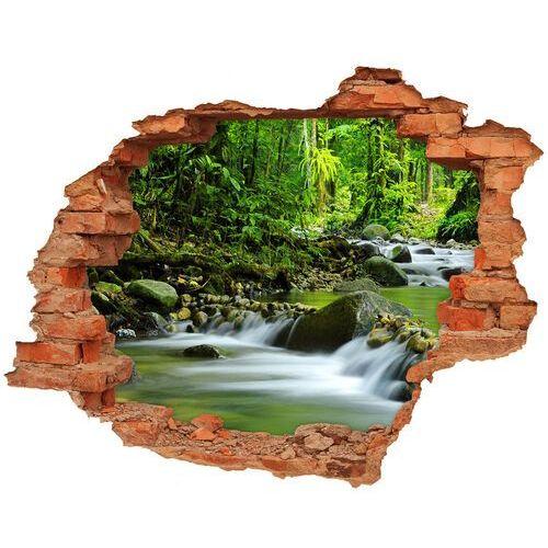 Dziura 3d w ścianie naklejka Górski potok