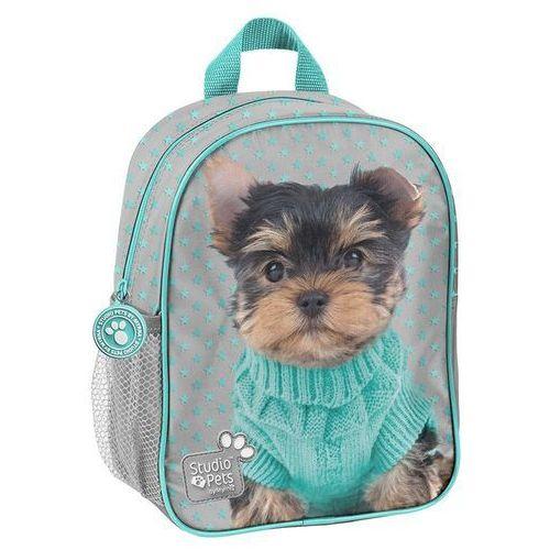 Plecak przedszkolny Studio Pets PTH-303 PASO (5903162078885)