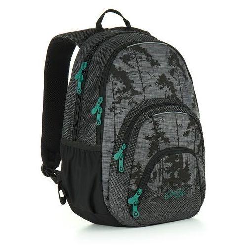 OKAZJA - Plecak młodzieżowy Topgal HIT 896 C - Grey