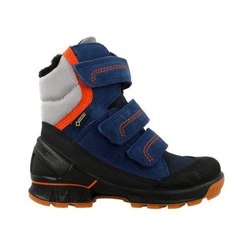 Ecco  biom hike kids (70313259282)