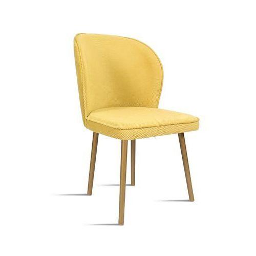 Krzesło rino miodowy/ noga złota/ lu2784 marki B&d