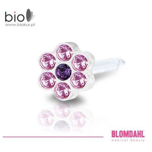 Kolczyk do przekłuwania uszu - daisy light rose / amethyst 5 mm marki Blomdahl