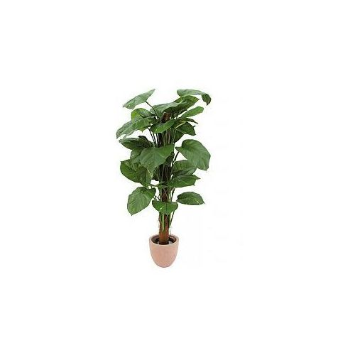 Europalms Giant pothos plant, green-yellow, 150cm, Sztuczna roślina - sprawdź w wybranym sklepie