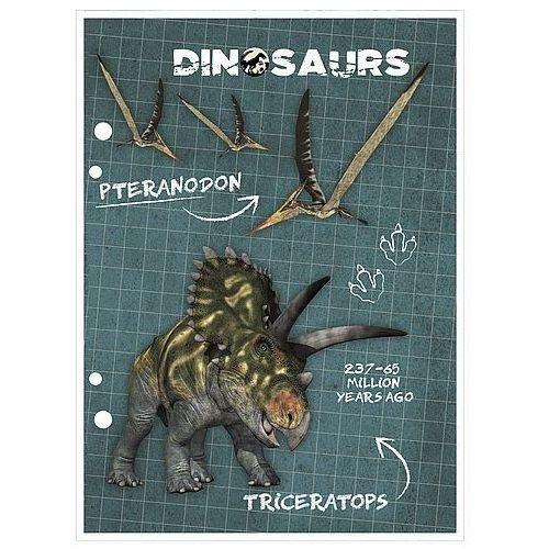 Wkład do segregatora a5 dinozaur marki Derform