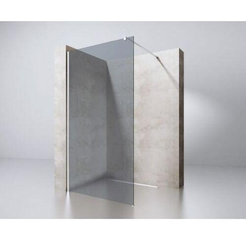 Swiss liniger Ścianka prysznicowa walk-in w9vg ciemniona 8mm