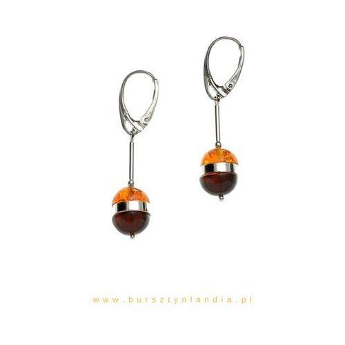 Bursztynlandia Srebrne kolczyki amber bee