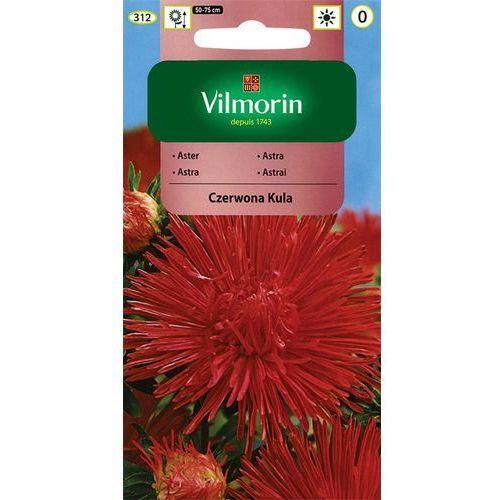Vilmorin Aster chński igiełkowy czerwona kula 0,5g