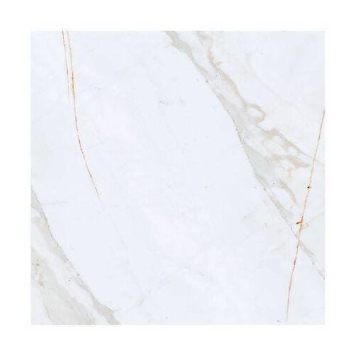 Gres szkliwiony shellstone 59.8 x 59.8 marki Arte