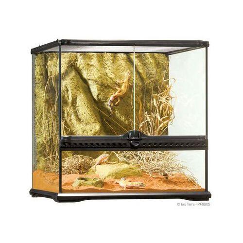 Exo terra Exoterra terrarium szklane small 45x45x45cm - darmowa dostawa od 95 zł!
