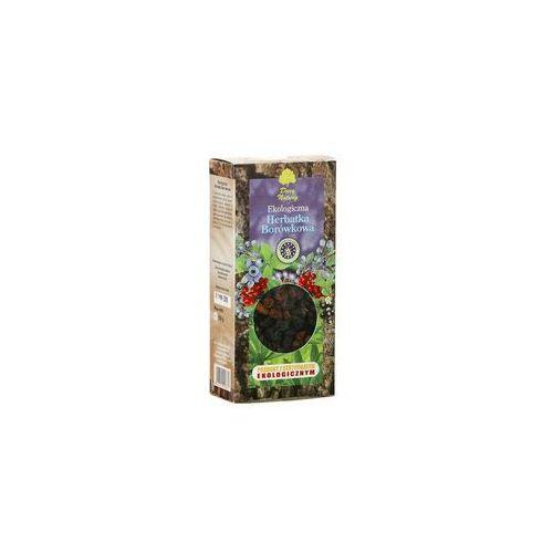 Herbata Borówkowa BIO 100g