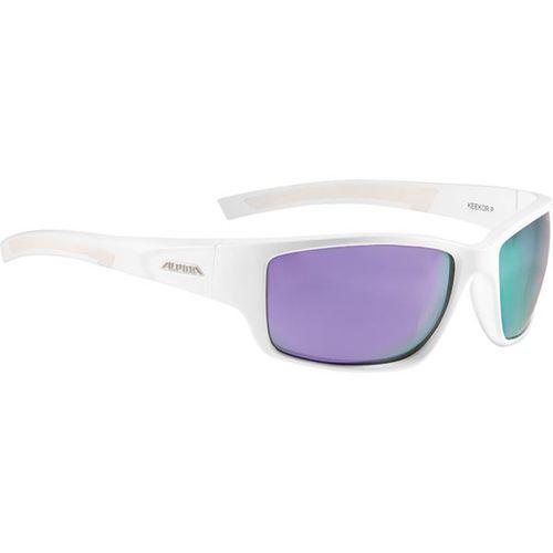 Okulary Słoneczne Alpina Keekor P Polarized A8579510