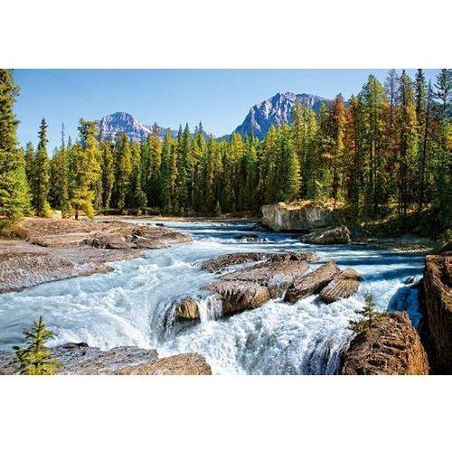 Castor Puzzle 1500 athabasca river - canada (5904438150762)