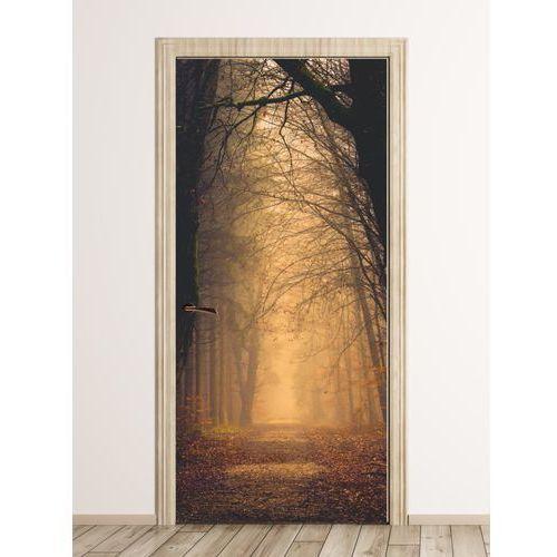 Wally - piękno dekoracji Fototapeta na drzwi leśna droga we mgle fp 4387