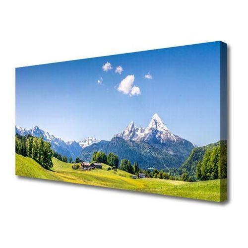 Obraz na Płótnie Pola Drzewa Góry Krajobraz