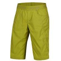 Spodenki MANIA SHORTS MEN - pound green