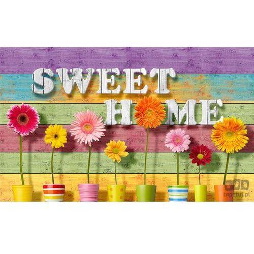 Fototapeta sweet home 3709 marki Consalnet