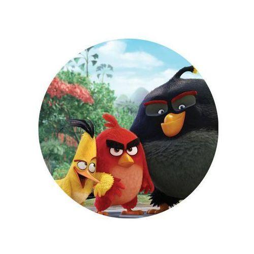 Dekoracyjny opłatek tortowy Angry Birds - 20 cm - 10