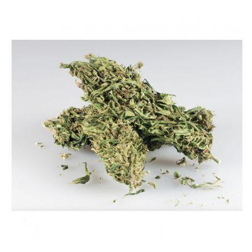 Sinsemilla CBD+ 10g - marihuana - sprawdź w wybranym sklepie