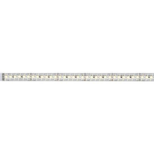 Paulmann Przedłużenie paska led ze złączem męskim 24 v 50 cm ciepły biały maxled 1000 70571 (4000870705711)