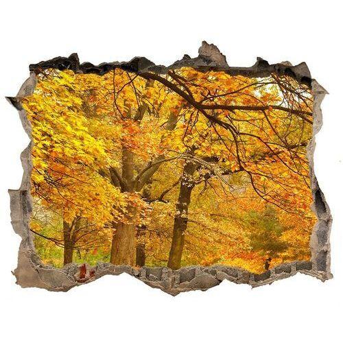 Dziura 3d w ścianie naklejka jesień w parku marki Wallmuralia.pl