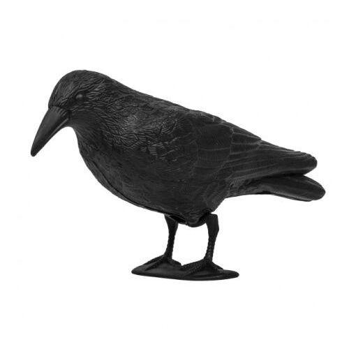 Odstraszacz ptaków Kruk 24cm Bradas 8045