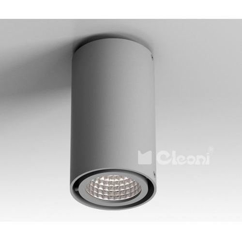 Lampa sufitowa tuz h1sh, t019h1sh+ marki Cleoni